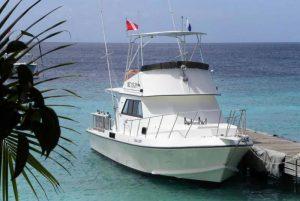 dive boat sea lion