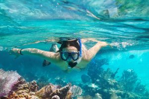 woman snorkeling inspects a coral reef