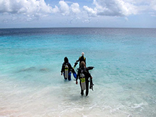 shore diving off curacao beach