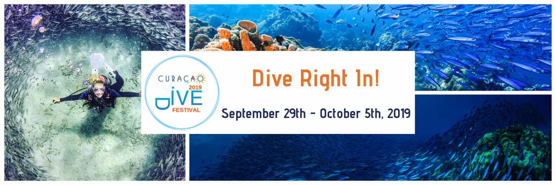 Dive Festival banner